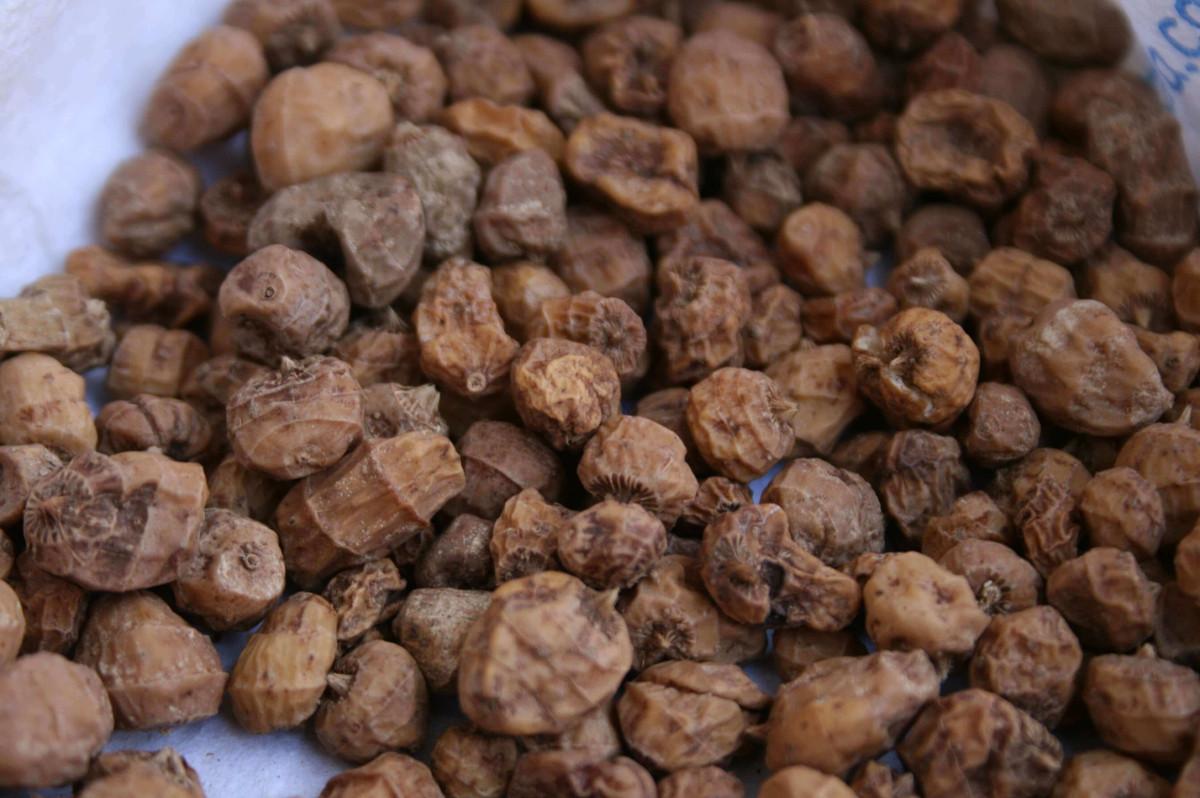 productos distribucion chufas franfer horchateria los valencianos
