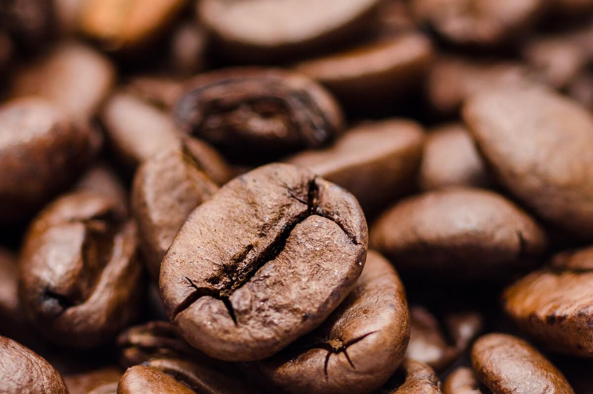 productos distribucion granizado cafe fabbri franfer horchateria los valencianos
