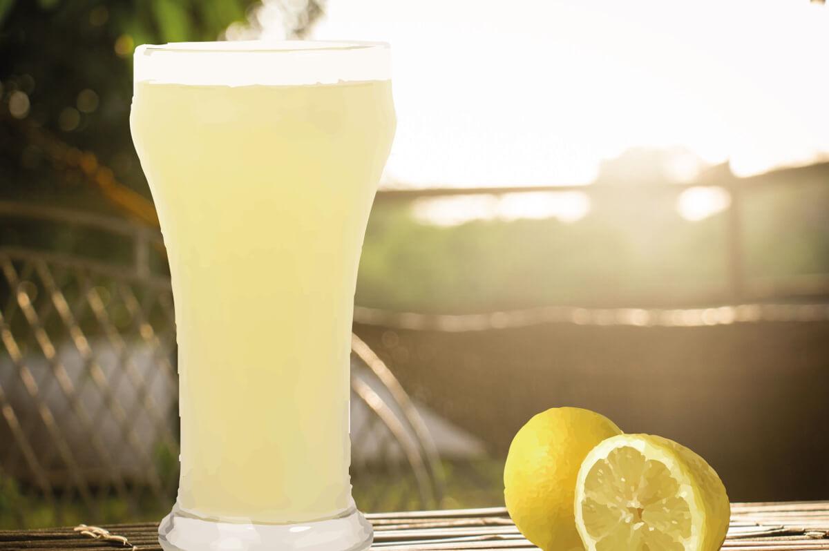 productos fabricacion limon granizado franfer horchateria los valencianos